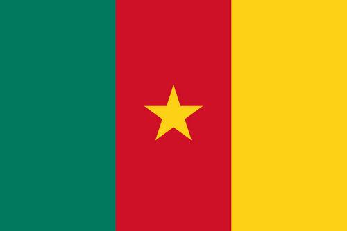 Drapeau camerouanis